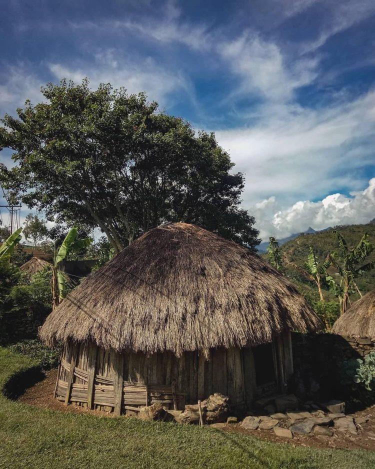 rumah adat honai dibangun oleh suku dani papua