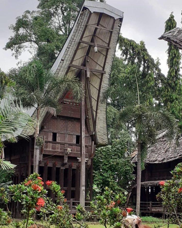23+ Rumah Adat di Pulau Sulawesi (PENJELASAN, GAMBAR, NAMA)